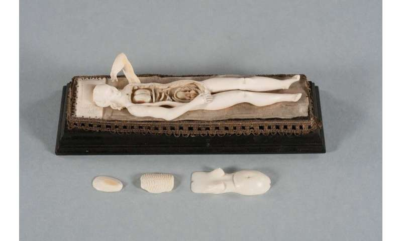 Imaging uncovers secrets of medicine's mysterious ivory manikins