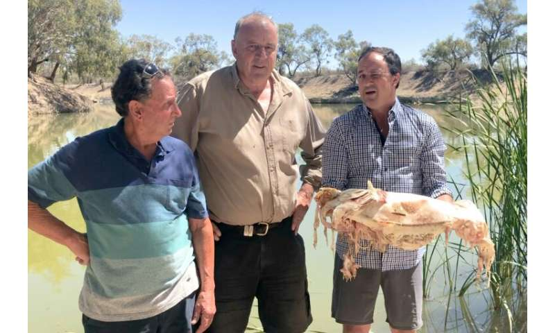 Jeremy Buckingham (R) holds a decades-old native Murray cod, which was killed during a massive fish kill in Menindee on the Darl