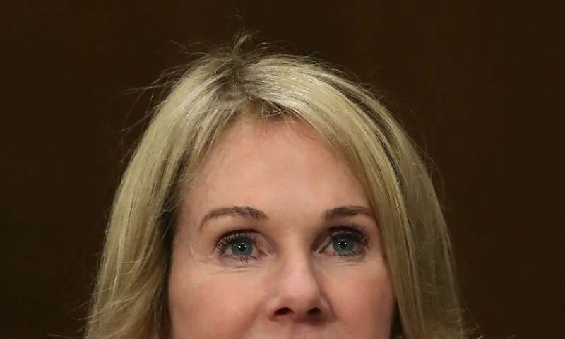 Kelly Knight Craft, who has been nominated to be the next US ambassador to the United Nations, raised eyebrows when she declared