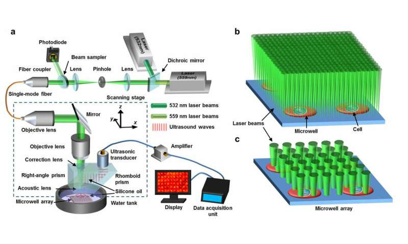 Laser technology helps researchers scrutinize cancer cells