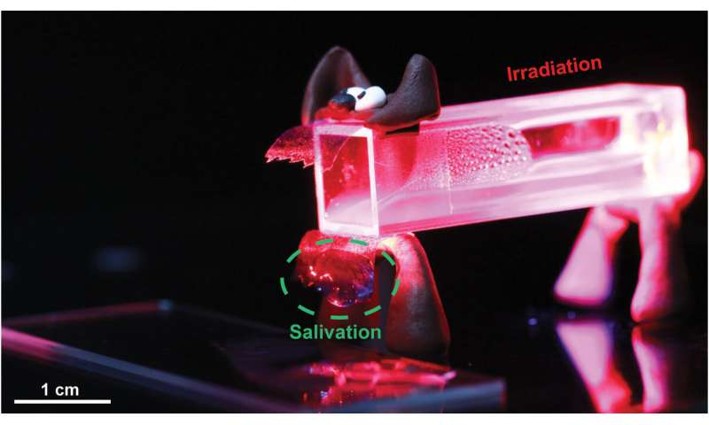 Like Pavlov's dog, this thermoplastic is learning a new trick: Walking