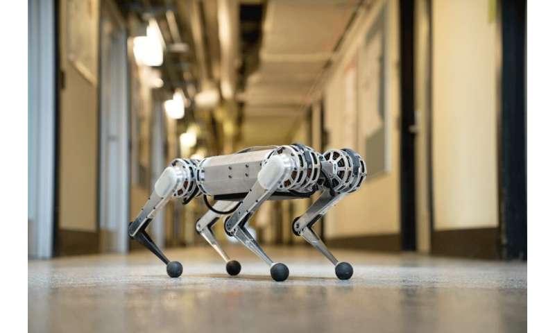 Limber mini cheetah robot delivers impressive backflip performance