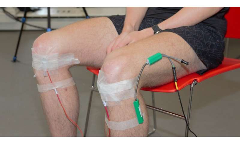 Listening to 'noisy knees' to diagnose osteoarthritis: The first human cohort study