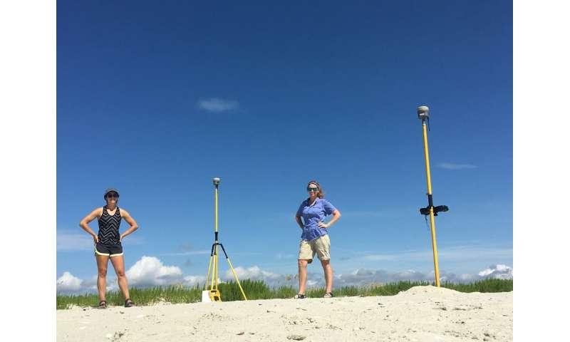 Loggerhead turtles headed for record-breaking season