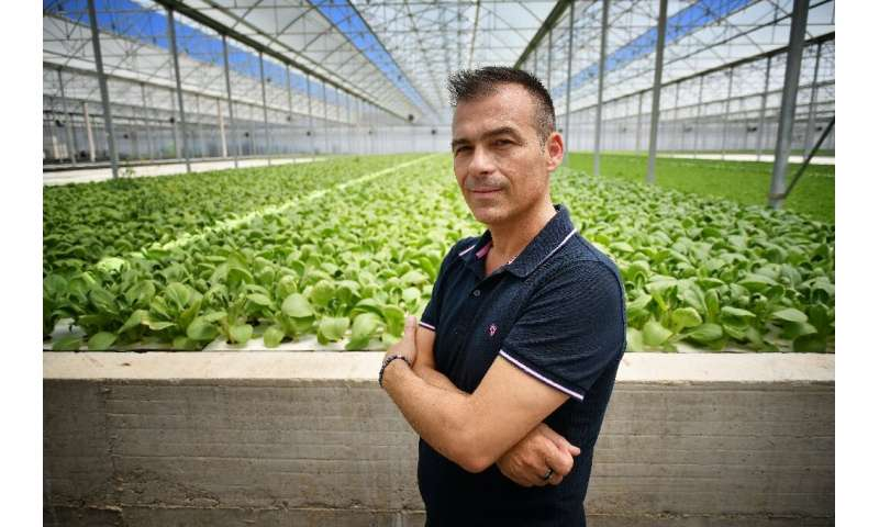 Luigi Galimberti plans to build 500 hectares of hydroponic greenhouses in the next 10 years