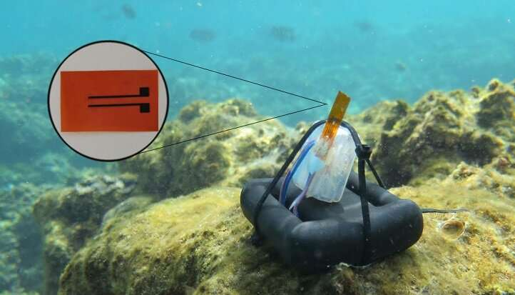 Marine sensor gets to grips with salt