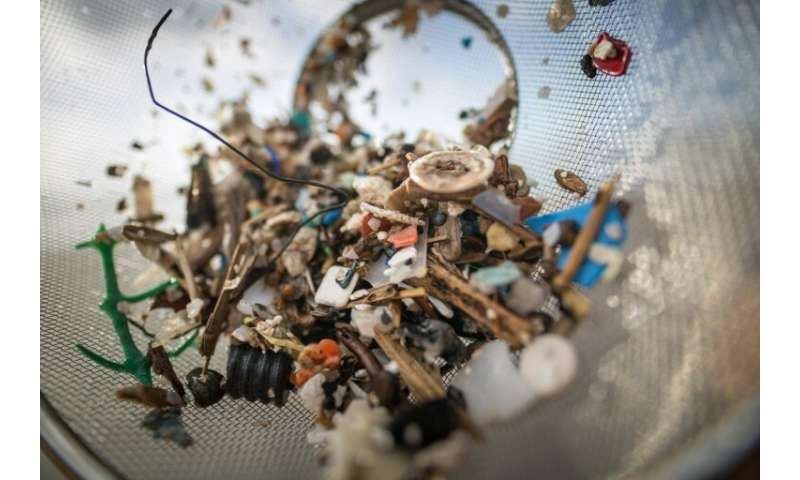Microplastic particles are either dumped directly into the seas via sewers and rivers or form when larger chunks of plastic brea