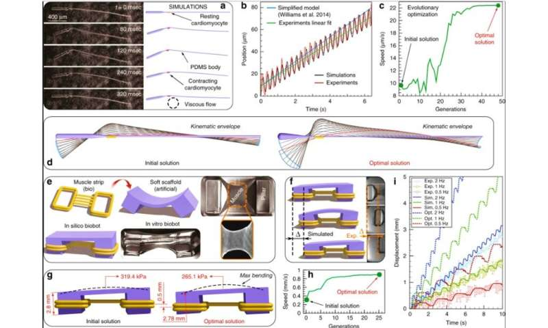 Modeling and simulating complex dynamic musculoskeletal architectures