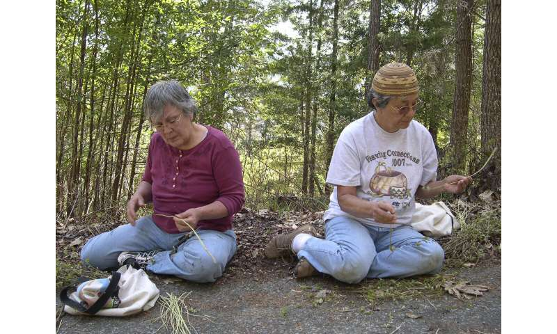 Native approaches to fire management could revitalize communities, Stanford researchers find