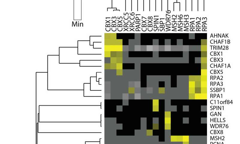 New method of scoring protein interactions mines large data sets from a fresh angle