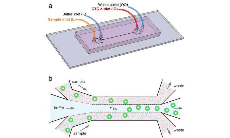 New microfluidics device can detect cancer cells in blood