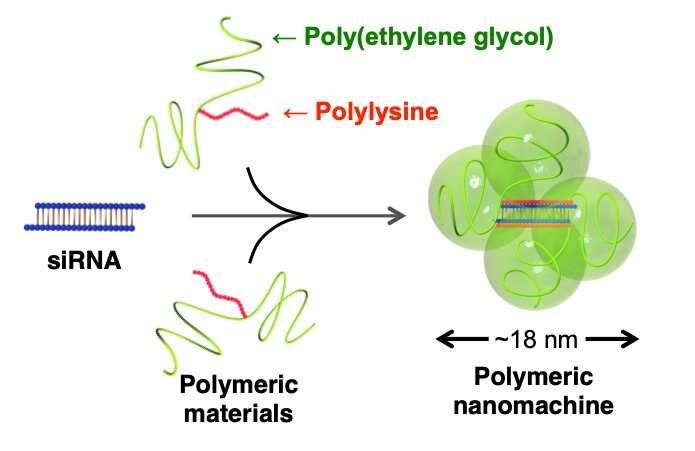 New nanomedicine slips through the cracks