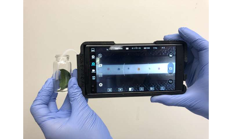 New, portable tech sniffs out plant disease in the field