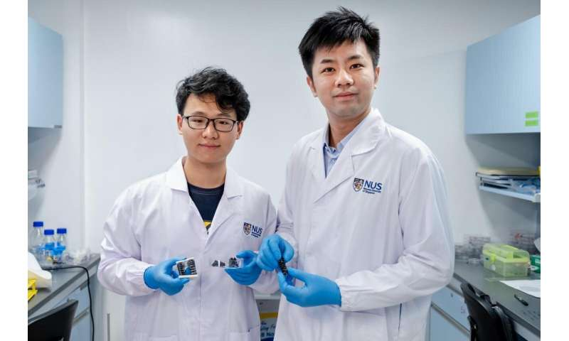 NUS researchers create new metallic material for flexible soft robots