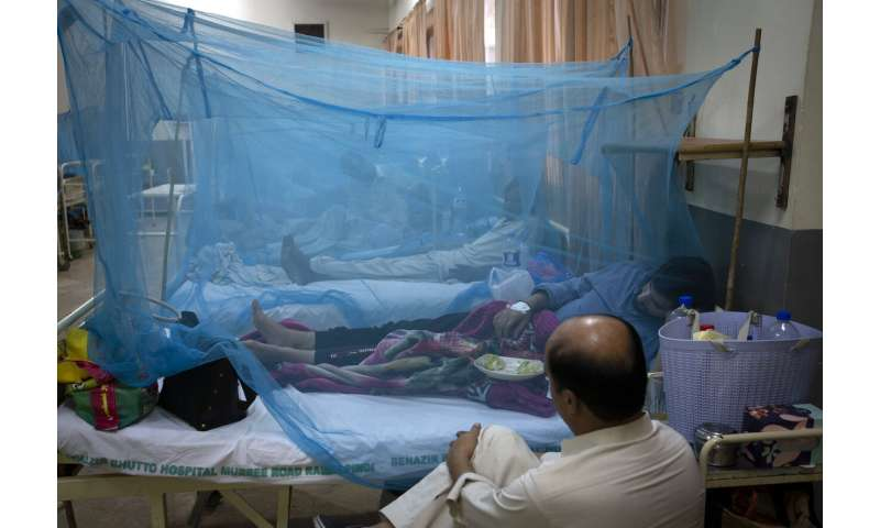 Official says dengue outbreak in Pakistan among worst-ever