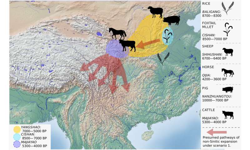 Origin of Sino-Tibetan language family revealed by new research