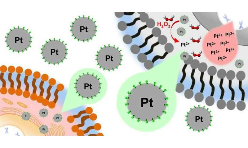 Platinum nanoparticles for selective treatment of liver cancer cells