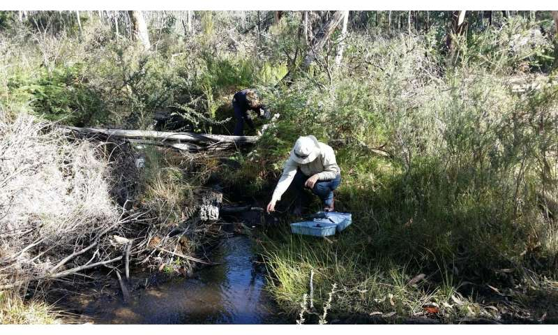 Protecting wetlands from underground mining impacts