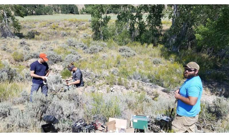 Research details response of sagebrush to 2017 solar eclipse
