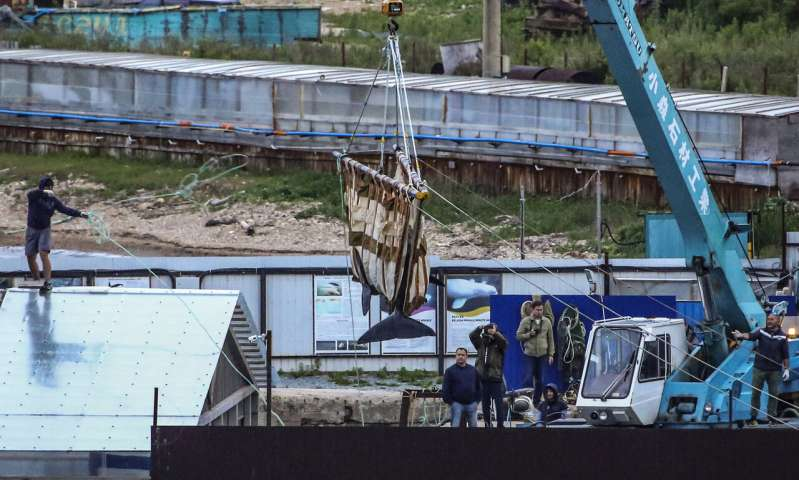 Russia to release 100 illegally captured whales