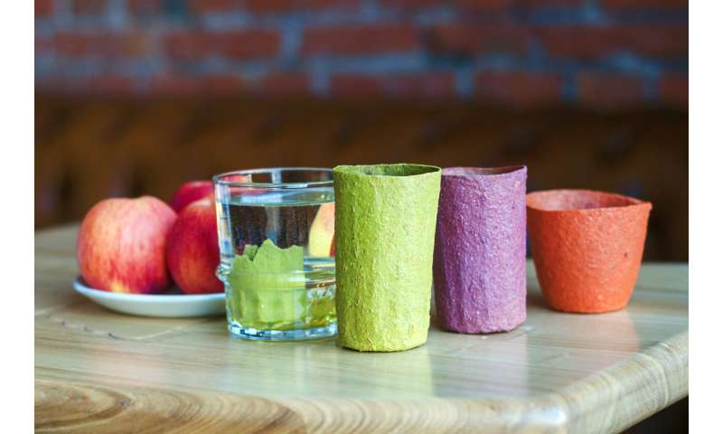 Samara scientists created disposable edible dishware made from apples