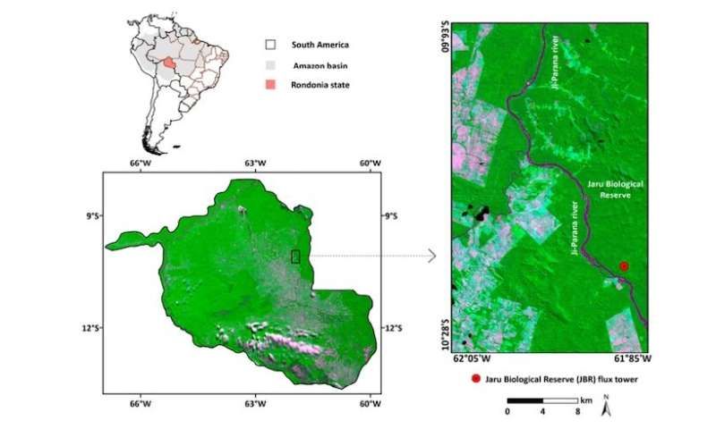 Satellite study of Amazon rainforest land cover gives insight into 2019 fires
