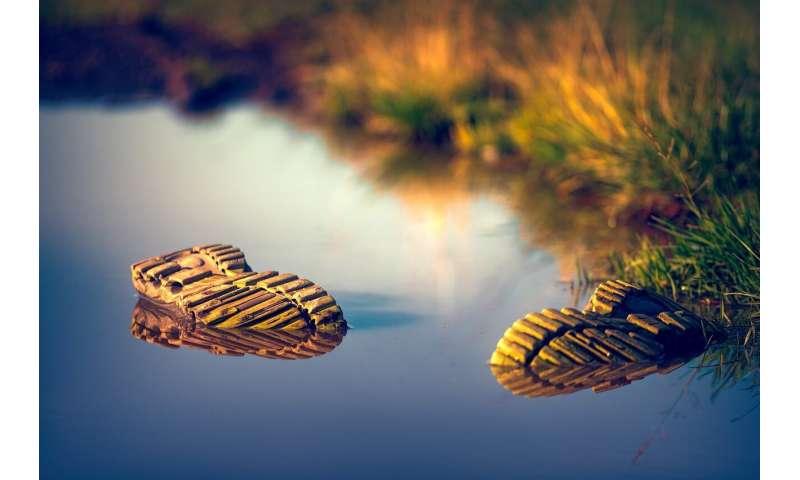 shoe water