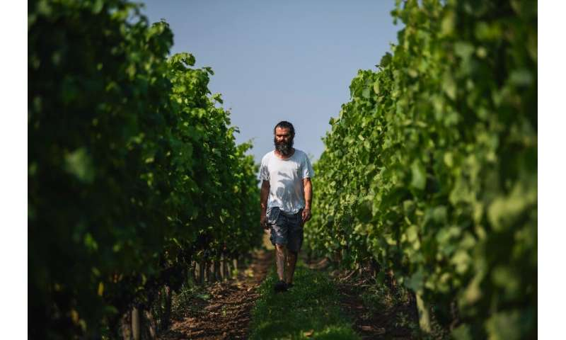 Sofrakis runs two properties and turns out a total of 20,000 bottles a year, almost a third of Sweden's total wine production