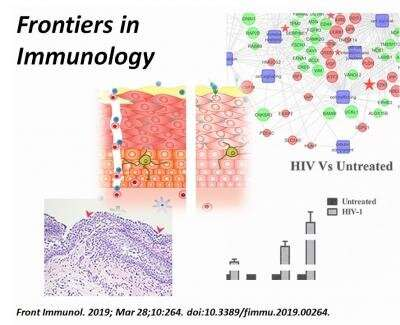 Study presents drug candidate for reversing mucosal barrier damage by HIV