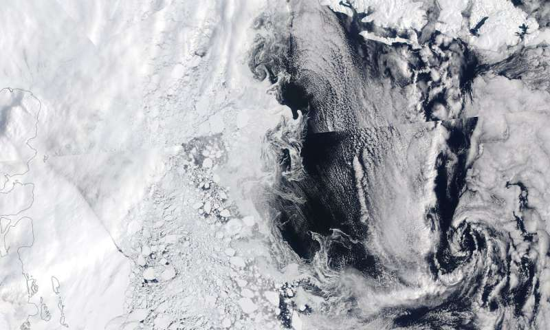 Study shows algae thrive under Greenland sea ice