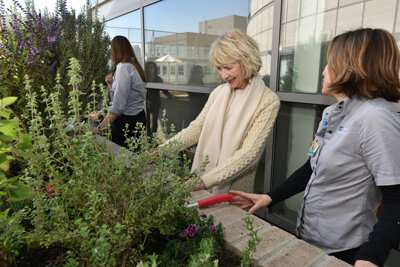 Study shows gardening had therapeutic effects for psychiatric patients