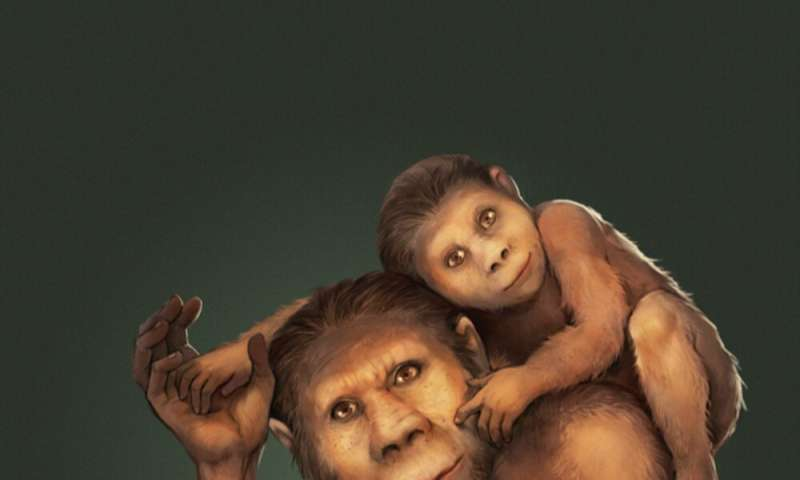 Teeth 'time capsule' reveals that 2 million years ago, early humans breastfed for up to 6 years