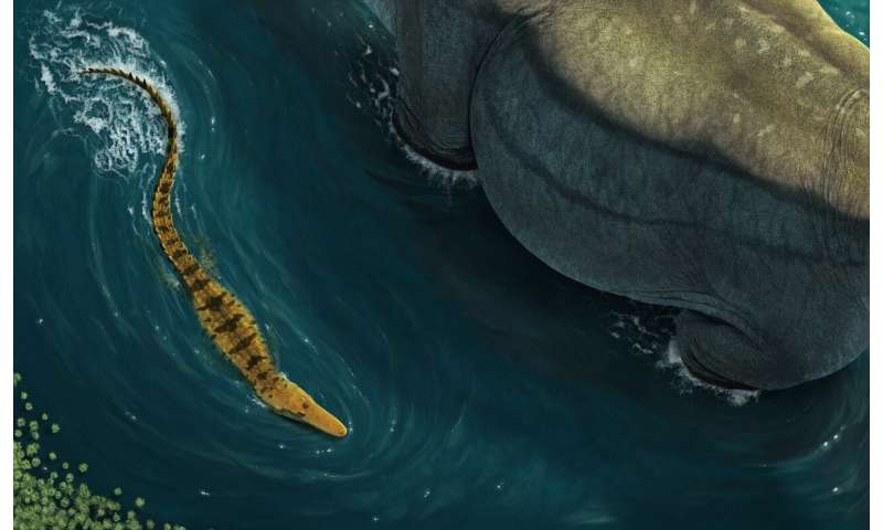 The ancient croc that preyed on dinosaurs