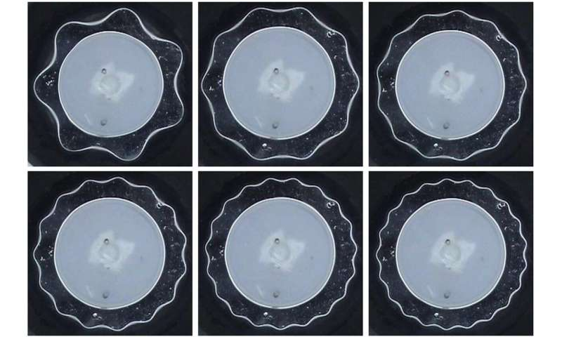 The first observation of a stable torus of fluid's resonance frequencies