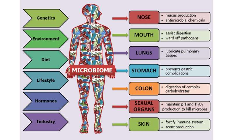 The human microbiome is a treasure trove waiting to be unlocked