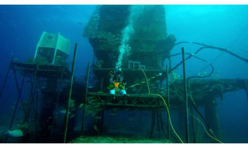 The stress of extreme living underwater for simulating upcoming Moon missions
