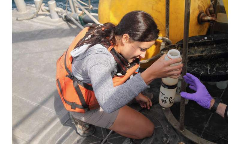Tiny shells reveal waters off California are acidifying twice as fast as the global ocean