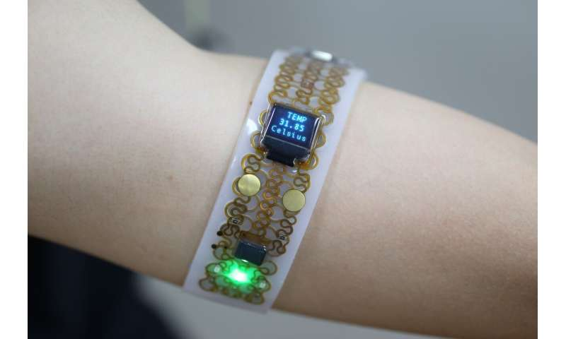 'Transformative electronics systems' to broaden wearable applications