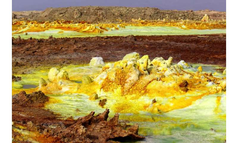 Ultra-small microbes exhibit extreme survival skills in Ethiopia's Mars-like wonderland