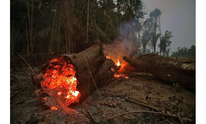 View of fire in the Amazon rainforest, near Abuna, Rondonia state, Brazil, on August 24, 2019