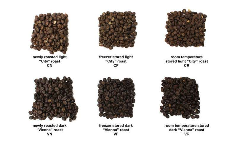 Wake up and smell the coffee: Research shows freezing beans can preserve aroma