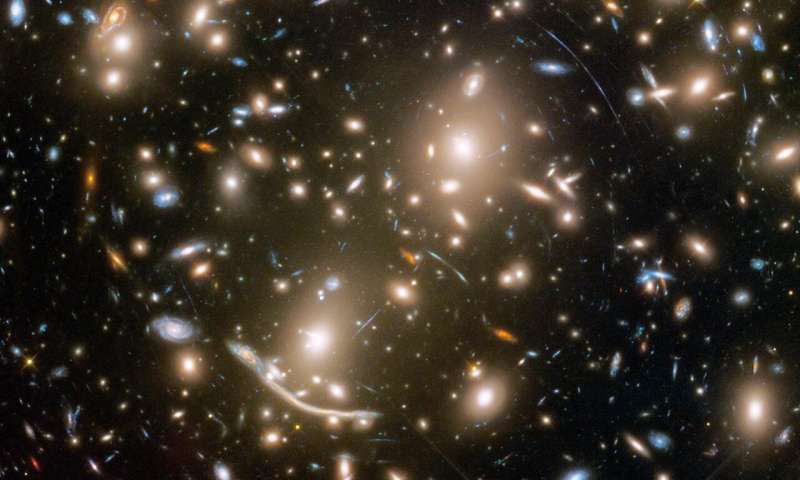 WFIRST will add pieces to the dark matter puzzle