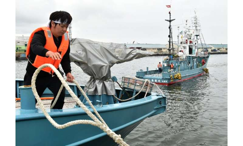 Whaling has long proved a rare diplomatic flashpoint for Tokyo