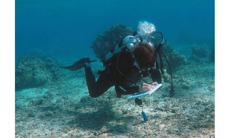 When coral reefs change, researchers and local fishing communities see different results