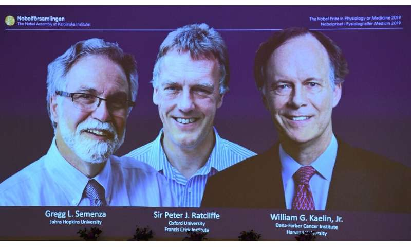 William Kaelin and Gregg Semenza of the US and Peter Ratcliffe of Britain were announced as the winners of 2019 Nobel Medicine P