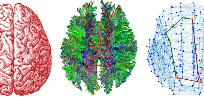 Your brain has 'landmarks' that drive neural traffic and help you make hard decisions