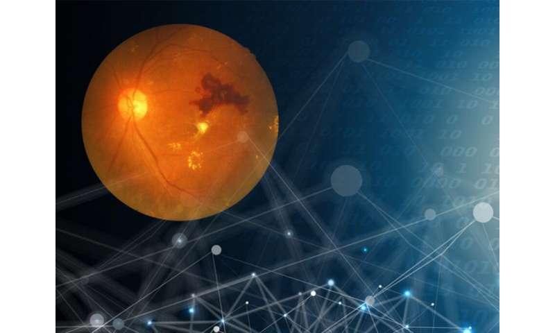 Deep learning model detects diabetic eye diseases accurately