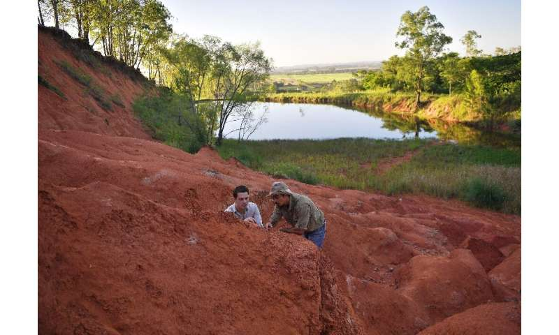 Paleontologists Rodrigo Temp Muller (L) and Jose Darival Ferreira examine a newly found fossil at a dig site in Agudo, Brazil