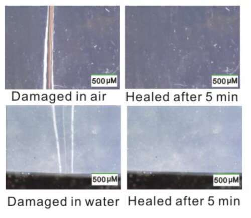 Scientists discover new type of self-healing material