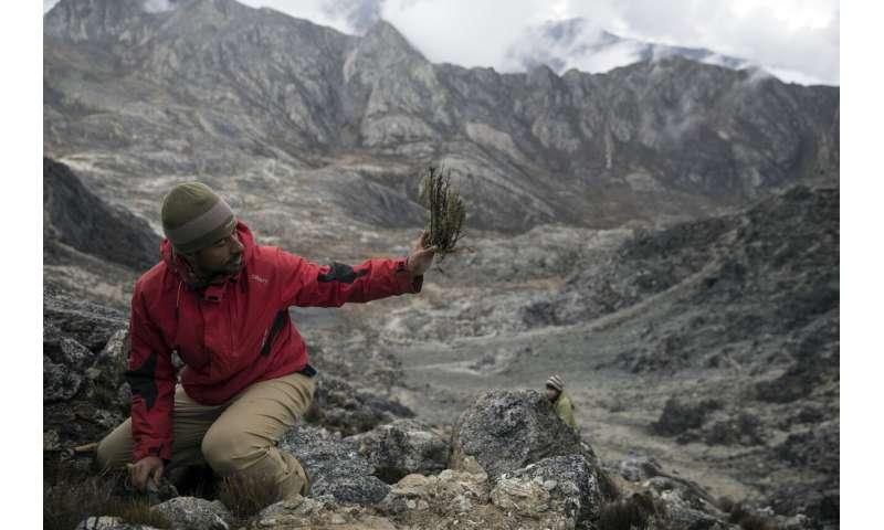 Intrepid scientists witness final days of Venezuelan glacier
